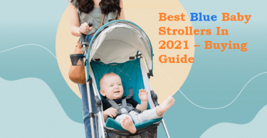 Best Blue Baby Strollers In 2021 – Buying Guide